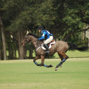 Buck Davidson Eventing Showcase