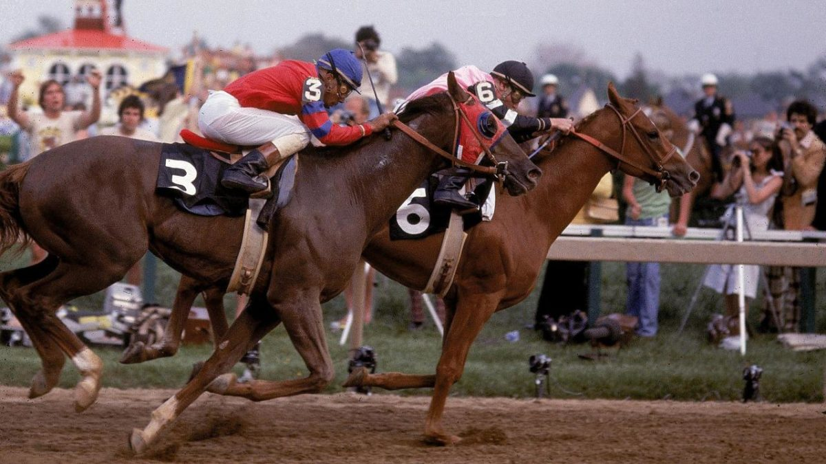 Affirmed get a nose up on his famous foe Alydar in the 1978 Preakness. (SI)