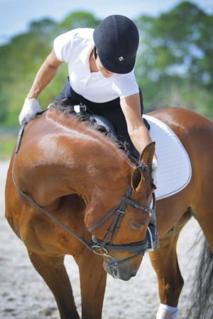 Does your horse have a Gripe List? Learn to listen to what he is trying to say and your partnership will benefit. Photo: © Fire and Earth Photography