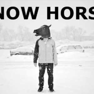 Snow Horse Wallpaper