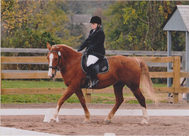 "Peggy and ""Joey"", competing in dressage today (Courtesy of the author)."