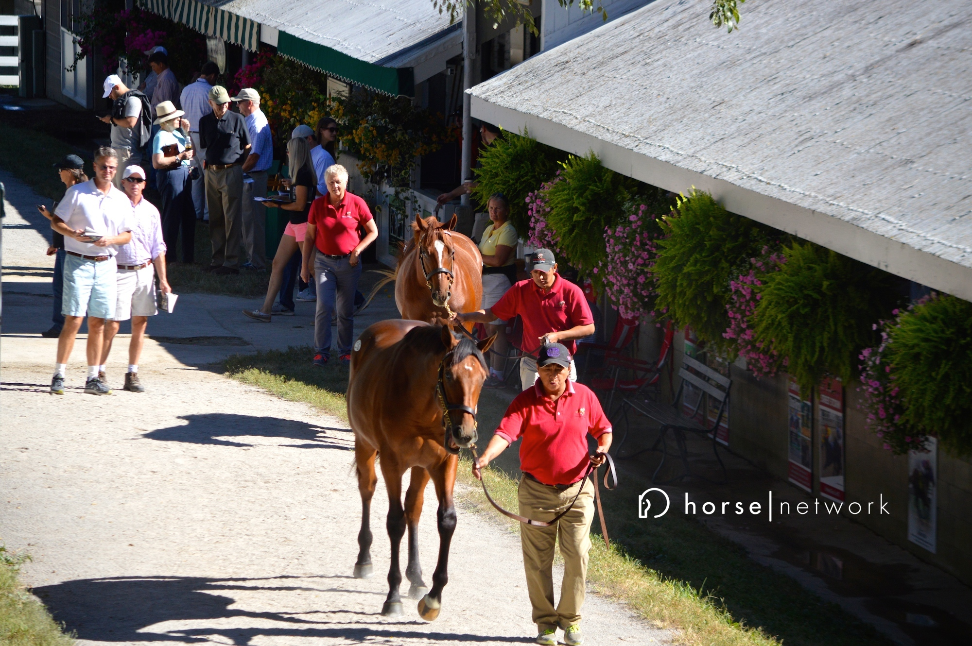 keeneland-yearling-sale