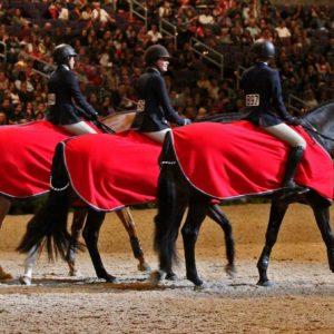 equitation-finals-top-3-fi
