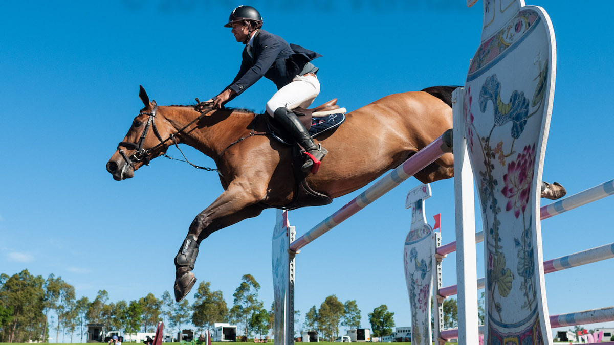 David Cameron and RR Dyranta competing in Round 2 of the CSI-W World Cup Qualifier at the 2014 Summer Classic Show Jumping on 14-12-2014 at the Sydney International Equestrian Centre. (flickr.com/Franz Venhaus)