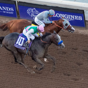 Michael McInally/Eclipse Sportswire/Breeders Cup
