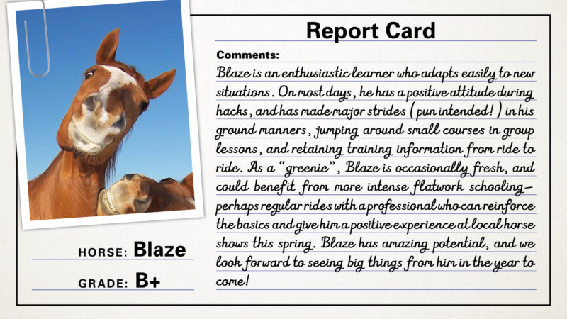 report-cards