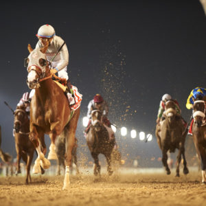 California Chrome and Victor Espinoza cruise past the finish line in the 2016 Dubai World Cup. ©Dubai Racing Club/Andrew Watkins