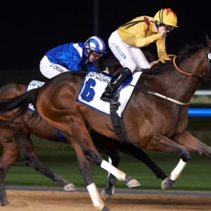 Reynaldothewizard with Richard Mullen up. ©Andrew Watkins/Dubai Racing Club