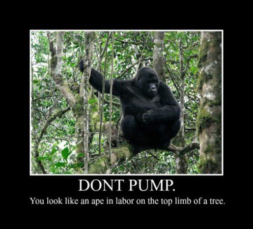Ape-in-Labor-e1420381246269