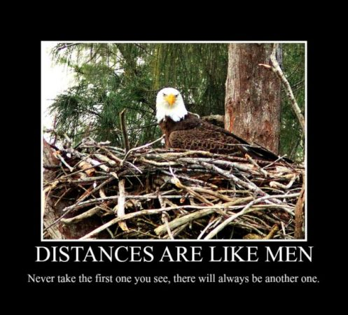 Distances-Like-Men-e1420380857986