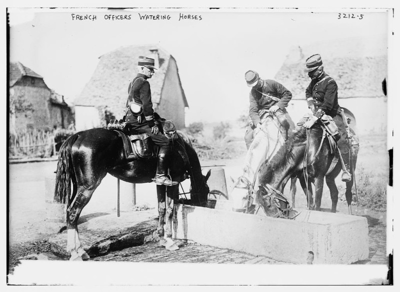 French-Officers-Water-horses-1914.1915_LOC1