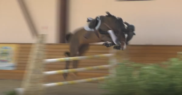 how to jump onto a horse