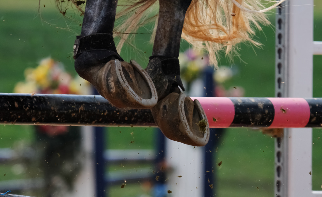 Show Jumpers Are 15% More Likely to Have a Rail Off the Left Lead