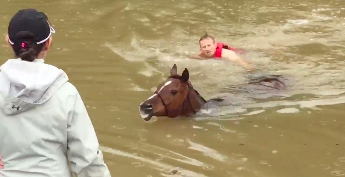 Houston Citizens Rescue Dozens Of Horses From Rising Flood