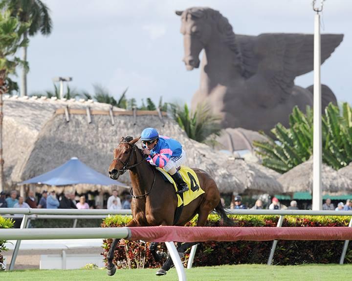Gulfstream Park Will Host World S Richest Horse Race In 2017