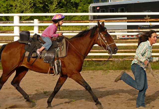 Trot Along Lesson Kid FREE