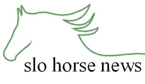 slo-hn-logo