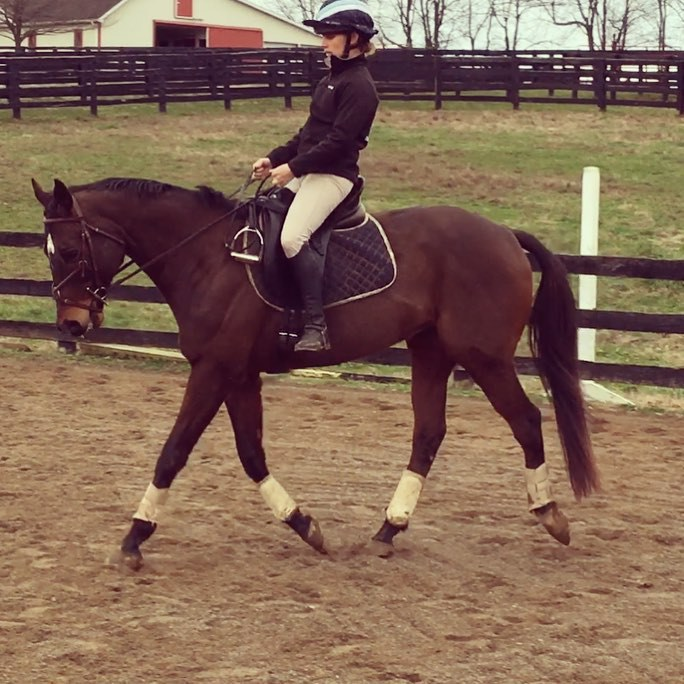 Our best dressage work is usually without stirrups…