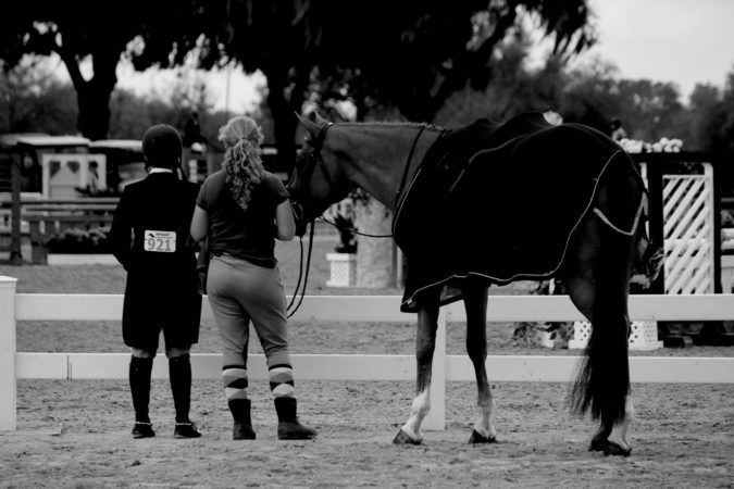 Barn Friends Show Ring FREE