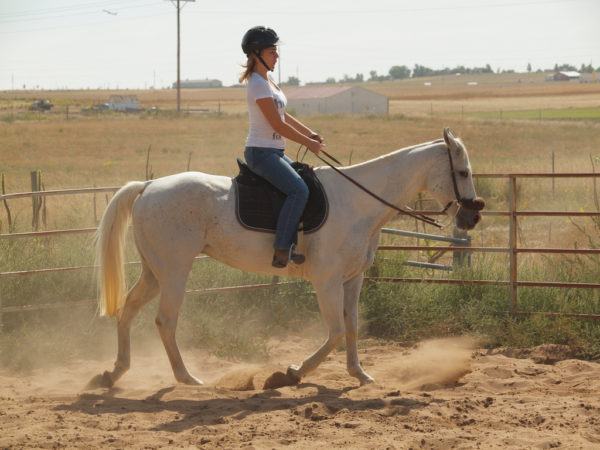 adult-rider- FREE