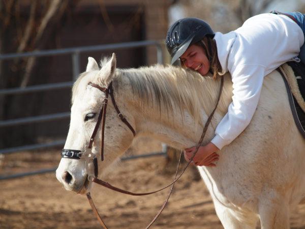 horse-hug-free