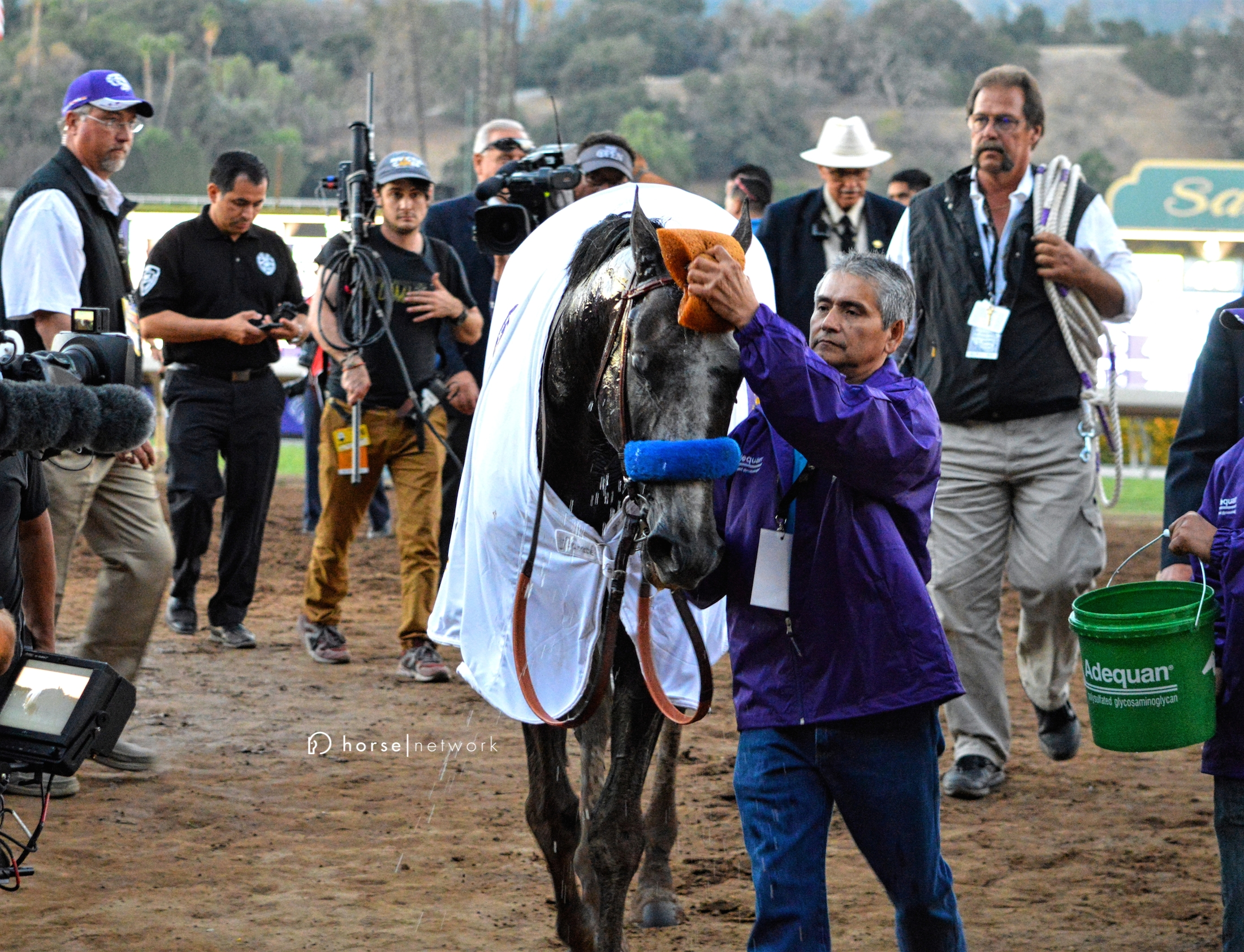 Groom Eduardo Luna offers some refreshment for his star.