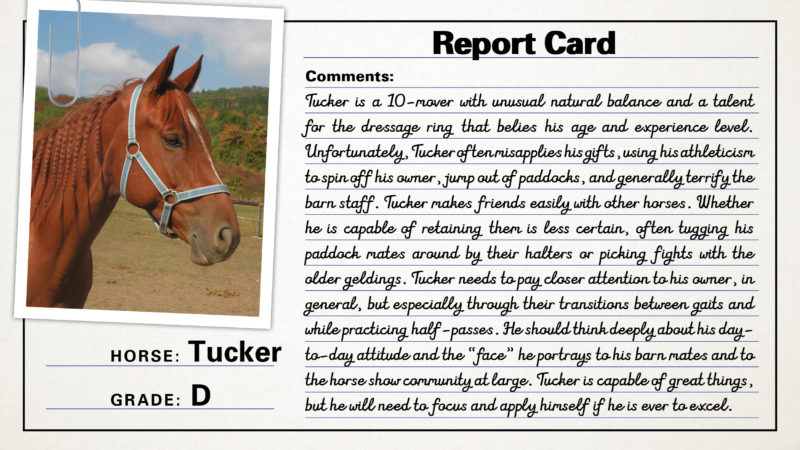 report-cards3