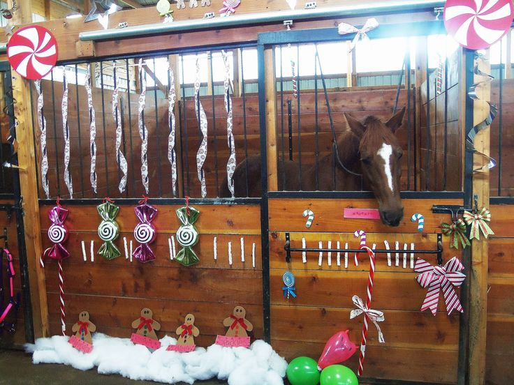 8 Reasons Why Christmas Is The Worst, According to Horses