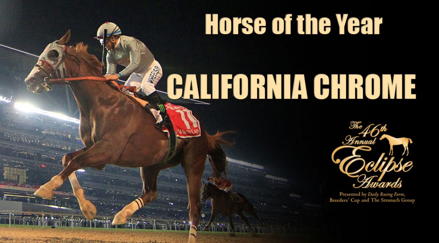 California Chrome Wins 2016 Horse Of The Year