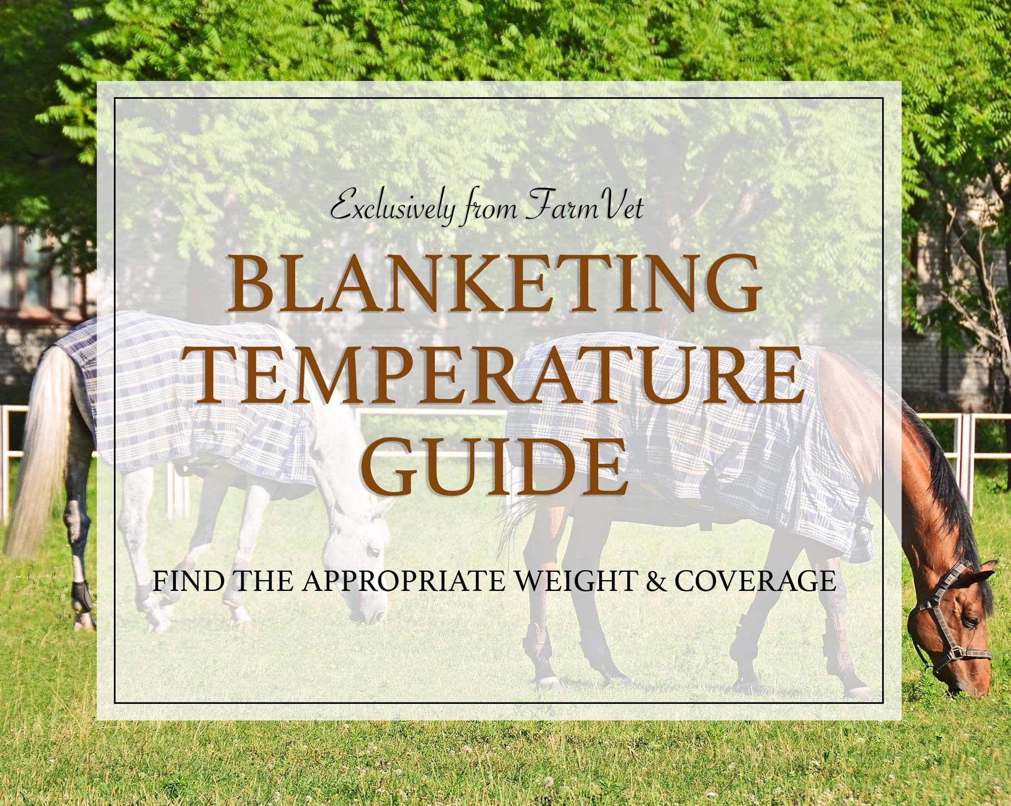 A No-Nonsense Guide to Blanketing