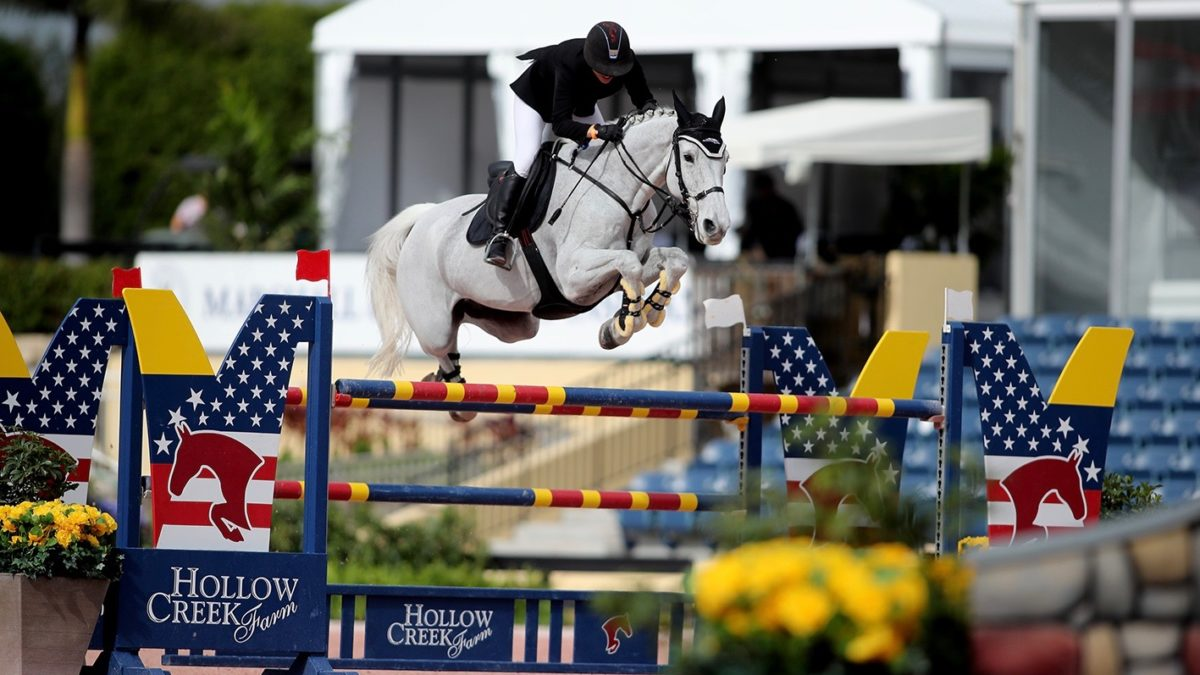 Clearwater Is the Clark Kent of Show Jumpers