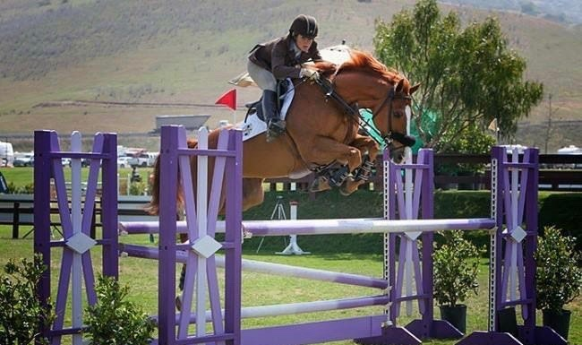 Today in Good Ideas: Free Classes for OTTBs!