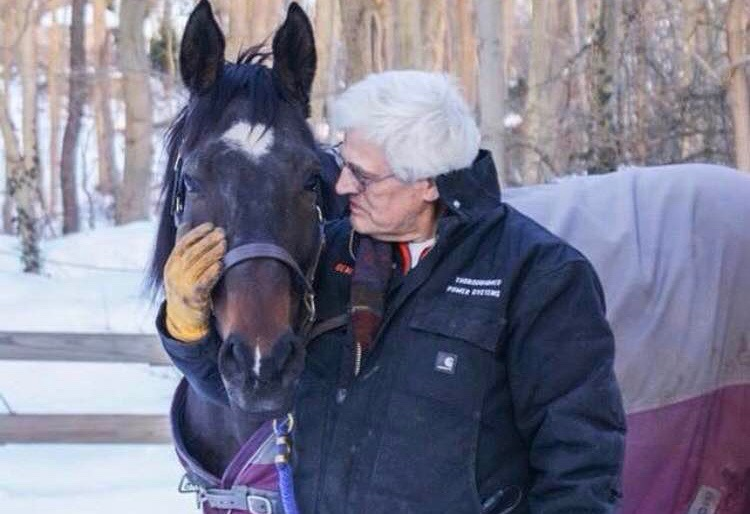 Helping Horses: An Inadvertent Nursing Career