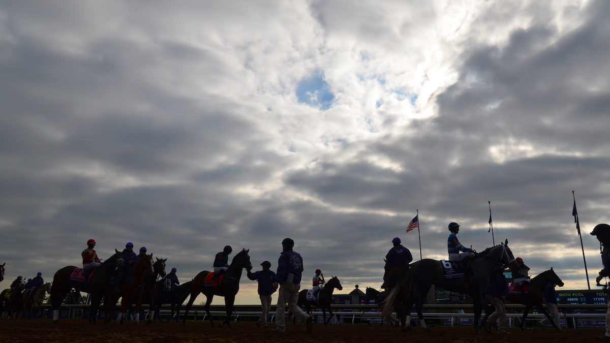 The Jockey Club Endorses Whip Ban