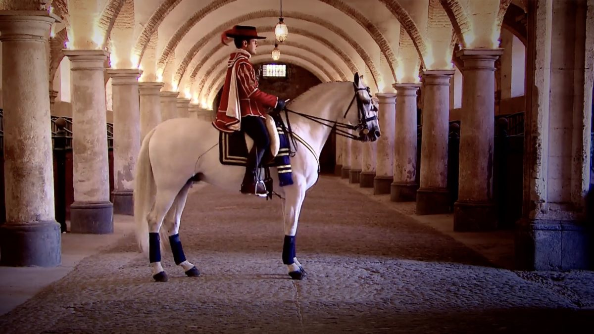 Horse of Kings: A Film of Spanish Escapism