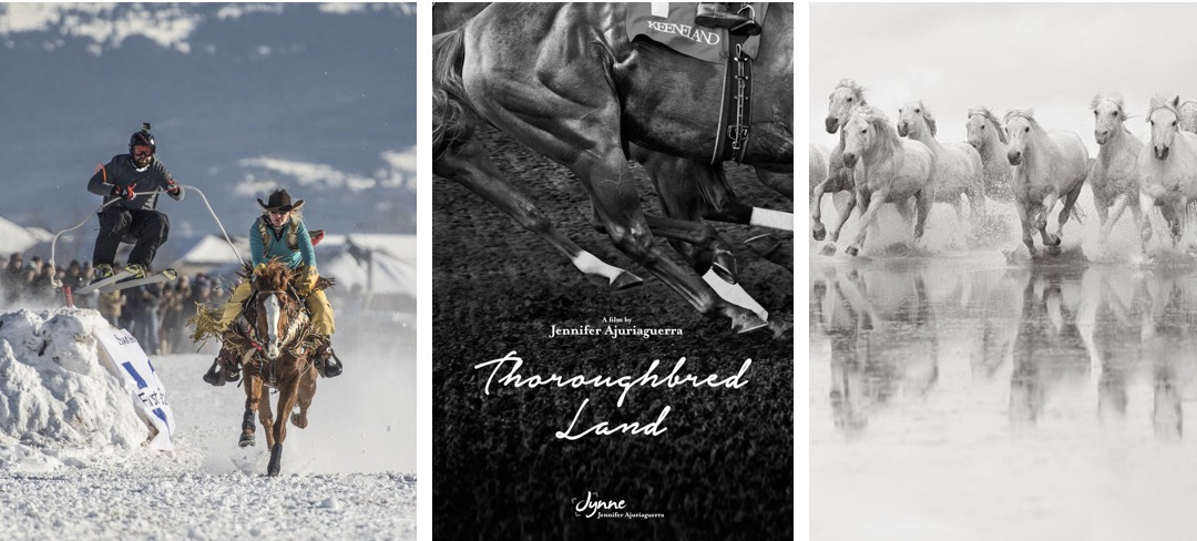 Three Short Films that Are a Master Class in Equine Photography